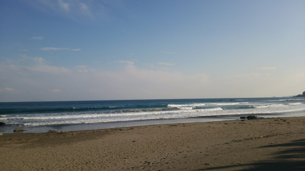 今年のSOULSURFCUPも 波が大当たりかも~